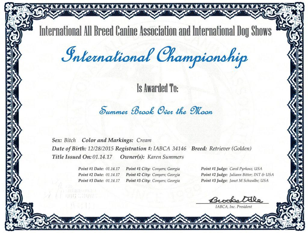 Molly's International Championship Dog Title